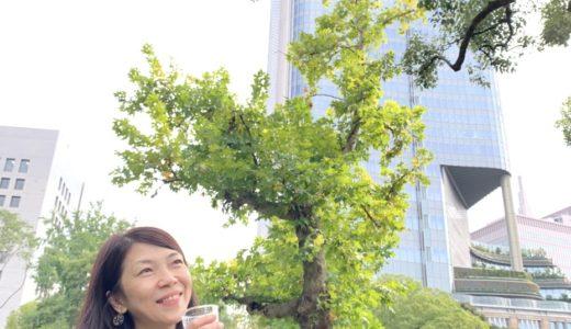 10/28(水)11時〜Pop'nタワー♪告知byさおりん♪