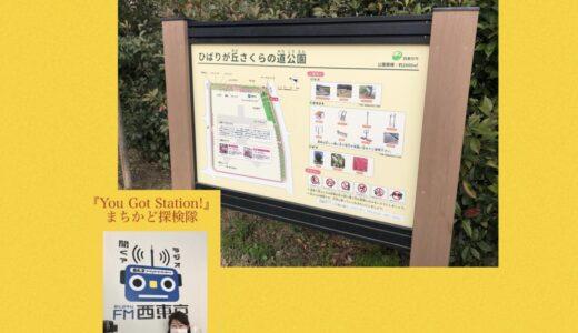 【まちかど探検隊】3/12(金)〈ひばりが丘さくらの道公園〉byなでしこkyoko
