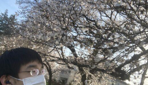 【まちかど探検隊】3/24(水)お久しぶりの田無駅で桜を感じよう!byひとみん